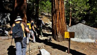 Half Dome Cables Down Sign